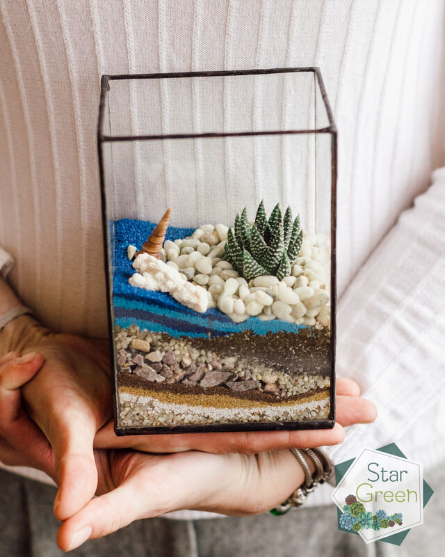 Магазин цветов StarGreen Морской флорариум с хавортией - фото 1