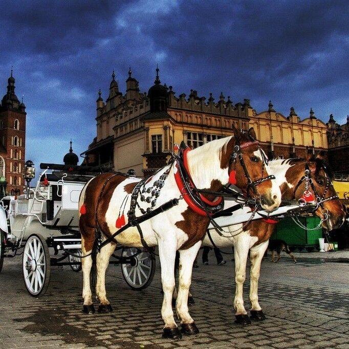 Туристическое агентство Новая Планета Экскурсионный автобусный тур «Новый год в Кракове» - фото 1