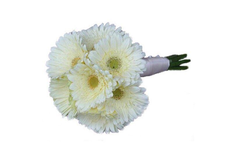 Магазин цветов Фурор Букетик из гербер - фото 1