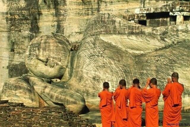 Туристическое агентство Южный край Пляжный тур на Шри-Ланку - фото 3
