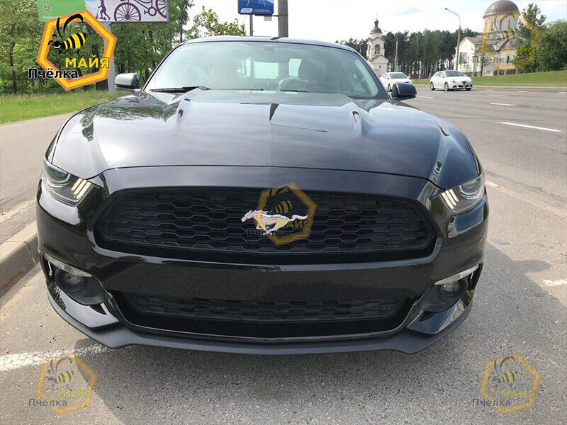 Прокат авто Ford Mustang 2015 г - фото 2