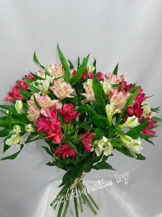 Магазин цветов Цветочник Альстромерия микс - фото 2