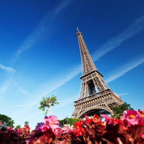 Туристическое агентство АлВитаТрэвел Автобусный экскурсионный тур «Французские каникулы» - фото 1