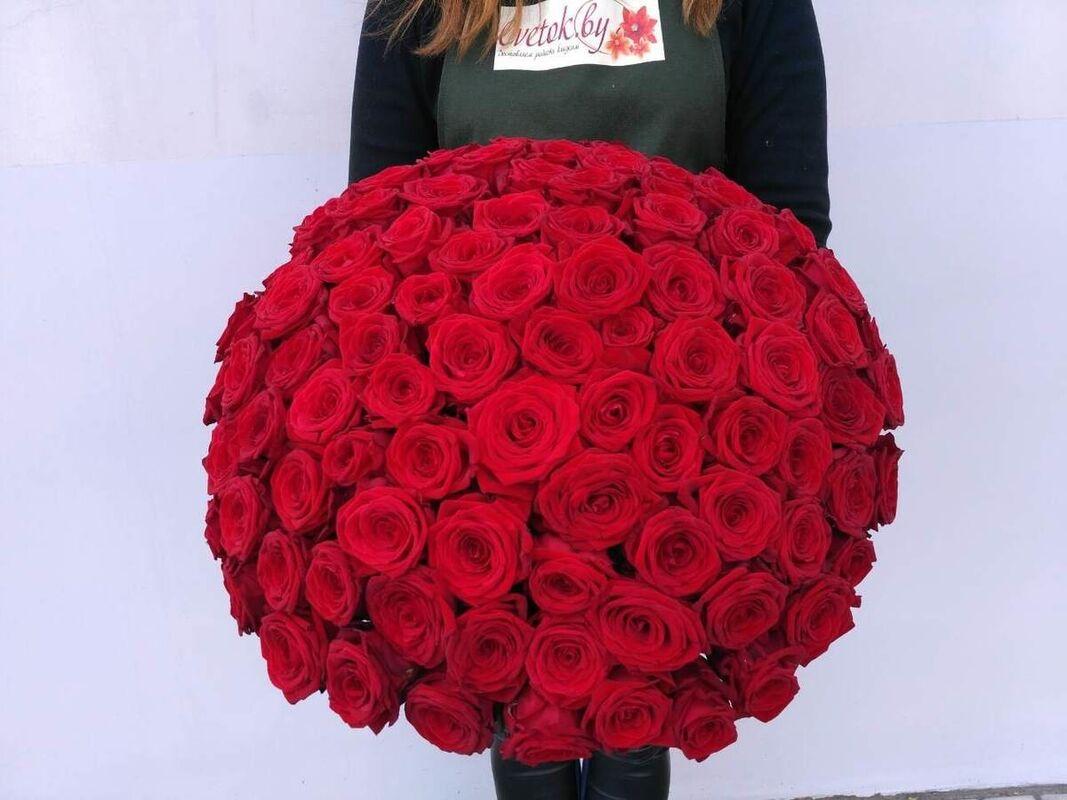 Магазин цветов Cvetok.by Букет из 101 красной розы - фото 1