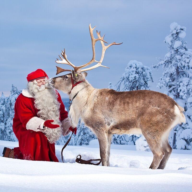 Туристическое агентство Респектор трэвел Экскурсионный тур автобус+паром «Новый год в Лапландии» - фото 1