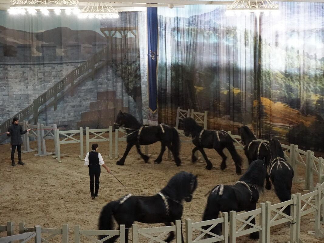 Организация экскурсии Виаполь Экскурсия «Белая Русь: Минск – Бобруйск 6 дней» - фото 12