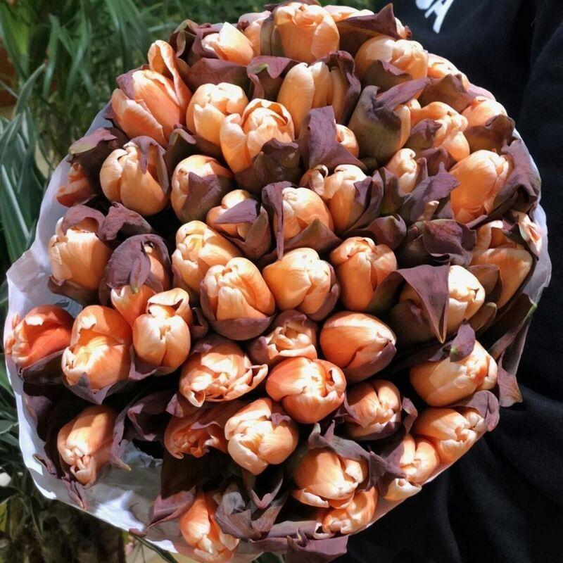 Магазин цветов Прекрасная садовница Тюльпан Salmon - фото 1