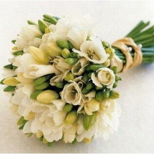 Магазин цветов Фурор Букет из фрезий - фото 1