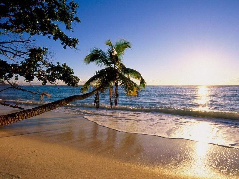 Туристическое агентство Атлас Мира Пляжный тур в Индию, Гоа, Jarrs Renton Manor 2* - фото 3
