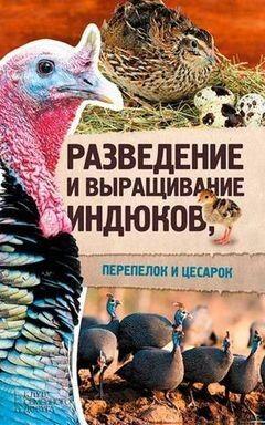 Книжный магазин Ю.С. Пернатьев Комплект книг «Разведение и выращивание: кур...» + «индюков... » + «уток...» - фото 2
