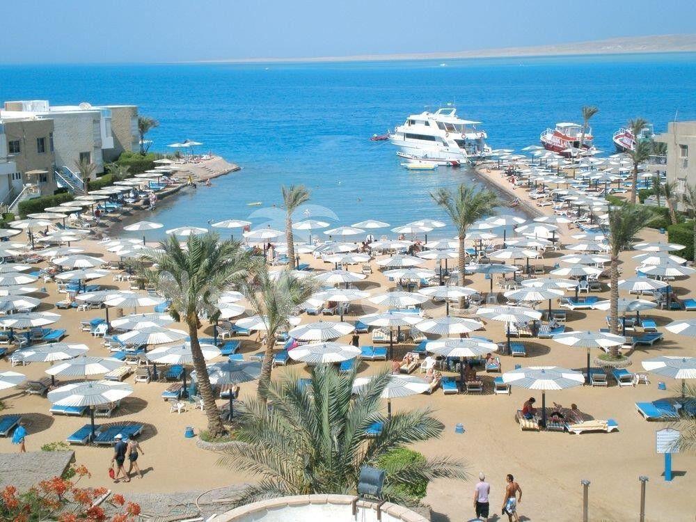 Туристическое агентство Отдых и Туризм Пляжный авиатур в Египет, Хургада, Seagull Beach Resort & Club 4* - фото 2