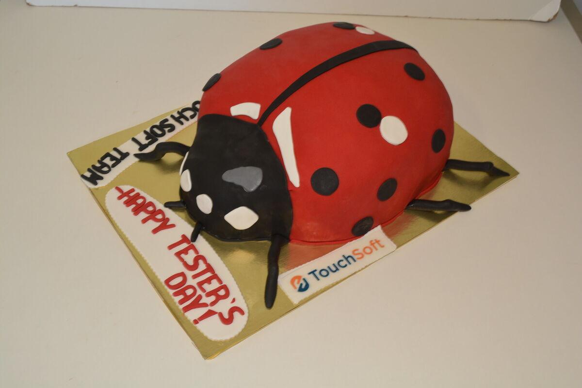Торт DOLCE Корпоративный торт «TouchSoft» - фото 1