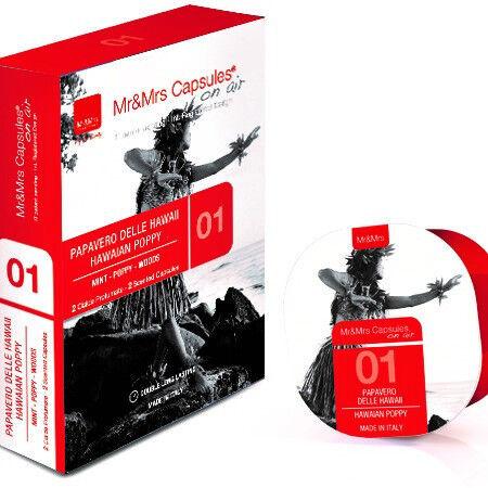 Подарок Mr & Mrs Fragrance Аромакапсула AIR - фото 1