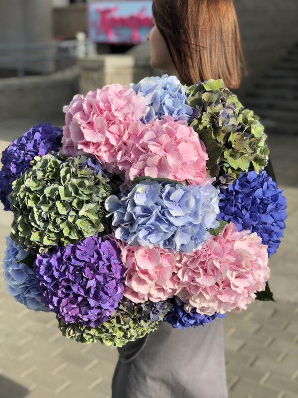 Магазин цветов Прекрасная садовница Гортензия в ассортименте разных сортов - фото 3