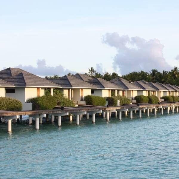 Туристическое агентство Jimmi Travel Отдых на Мальдивах, Sun Island Resort 5* - фото 1