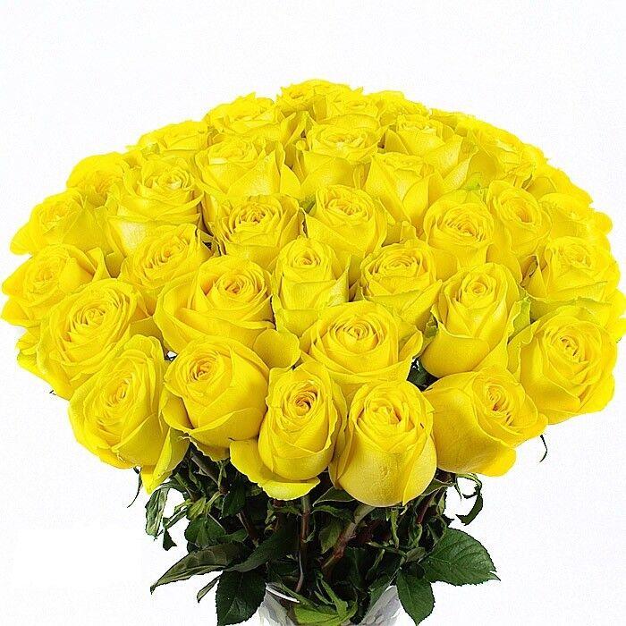 Поздравление, букет желтых роз картинки
