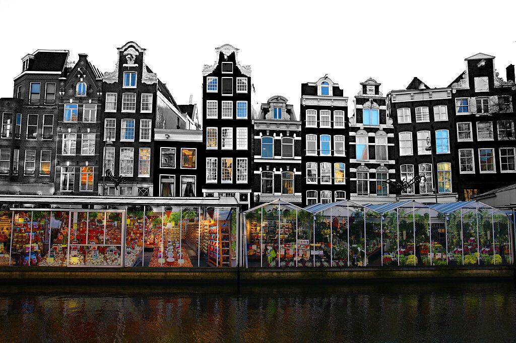 Туристическое агентство ТрейдВояж Экскурсионный автобусный тур в Нидерланды NLD B02 - фото 2