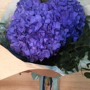 Магазин цветов Прекрасная садовница Монобукет из гортензии - фото 1