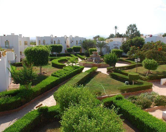 Туристическое агентство Санни Дэйс Пляжный авиатур в Египет, Шарм-Эль-Шейх, The Regnum Hotel 4* - фото 6