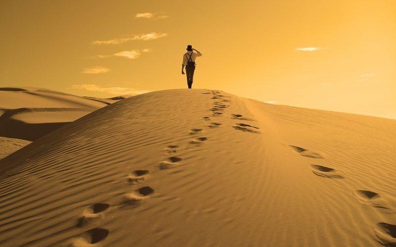 Туристическое агентство Южный край Семейный отдых в Тунисе - фото 2