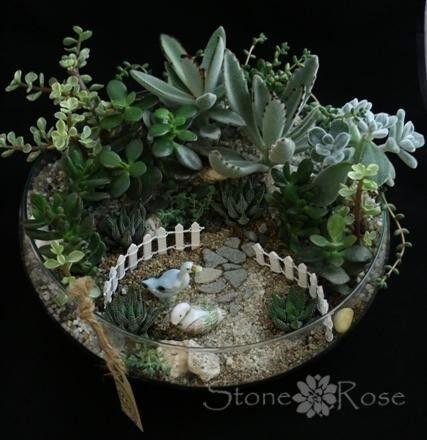 Магазин цветов Stone Rose Мини-садик из суккулентов в стеклем - фото 1