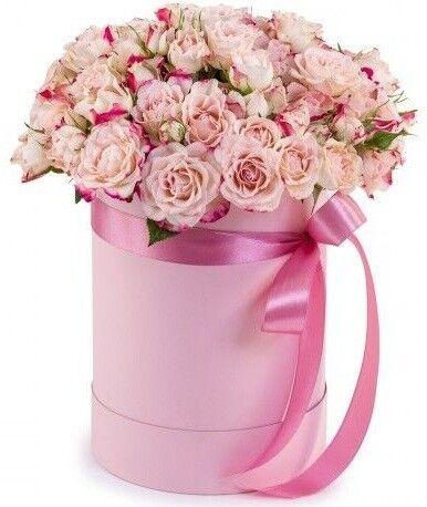 Магазин цветов Фурор 11 кустовых роз в круглой коробке - фото 1