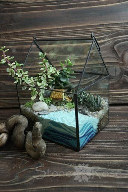 Магазин цветов Stone Rose Флорариум с суккулентом «Дом без крышки» - фото 1