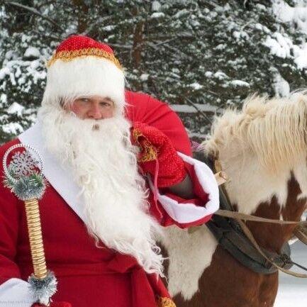Тур на Новый год Эпифора «Новогодняя сказка в Березинском заповеднике!» - фото 1