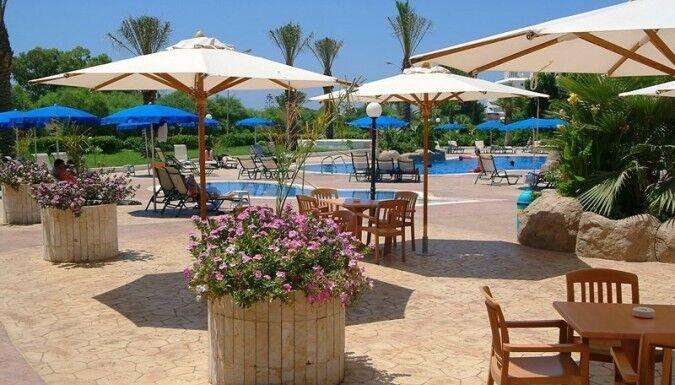 Туристическое агентство EcoTravel Пляжный авиатур на Кипр, Айя-Напа, Nissiana Hotel & Bungalows 3* - фото 4