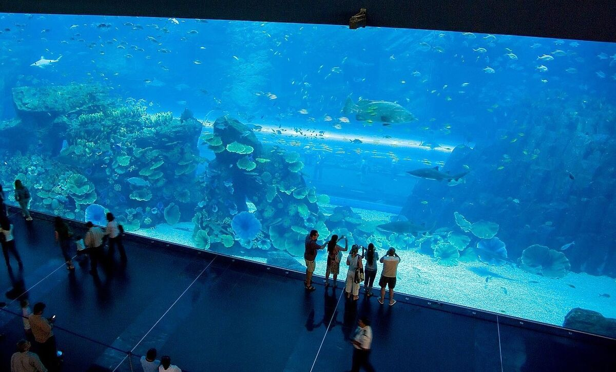 Туристическое агентство Велл Пляжный авиатур в ОАЭ, Шарджа, Citymax Hotel Sharjah 3* - фото 5
