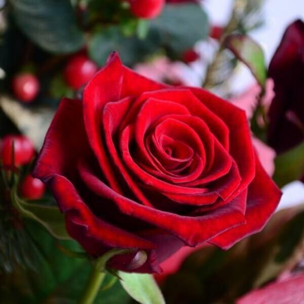 Магазин цветов Букетная Букет «Новогоднее Поздравление» - фото 4