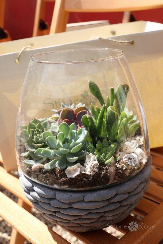 Магазин цветов Stone Rose Стеклянный террариум с бетонной подставкой - фото 1