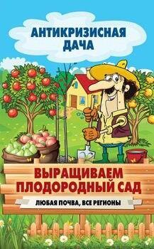 Книжный магазин С. Кашин Книга «Выращиваем плодородный сад. Любая почва, все регионы» - фото 1