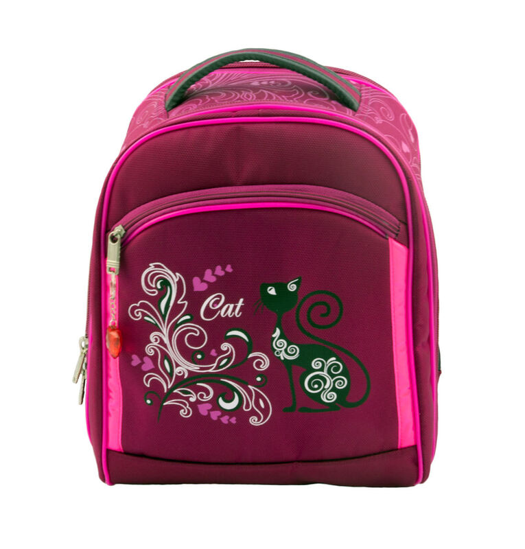 Магазин сумок Sandlex Рюкзак школьный «Котик» 429М - фото 1
