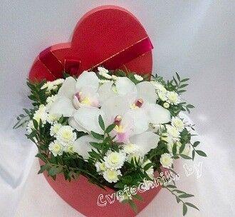 Магазин цветов Цветочник Орхидея в коробке - фото 1
