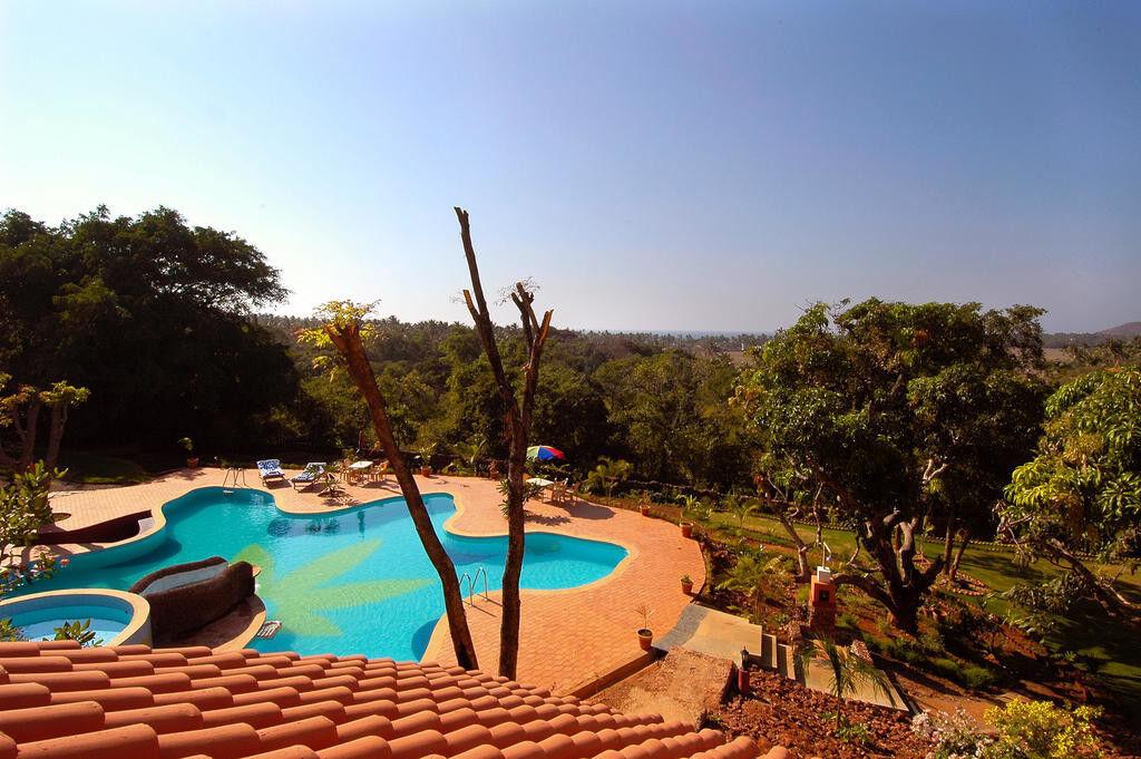 Туристическое агентство VIP TOURS ГОА , уединенный отдых в Nirvana Hermitage 3* - фото 6