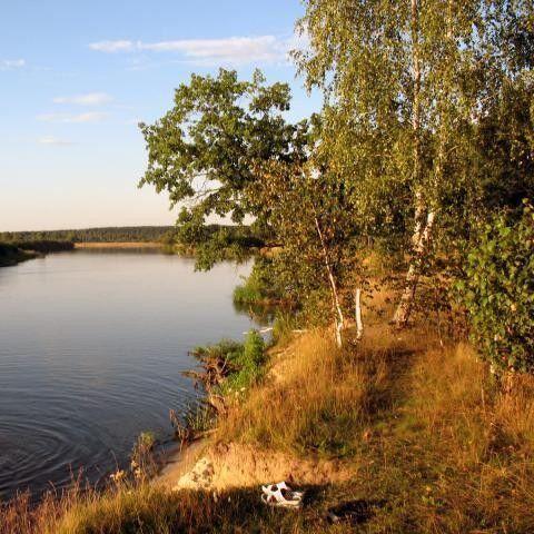 Организация экскурсии Дортур Экскурсия «Белая Русь: Минск - Березина, 5 дней» - фото 3