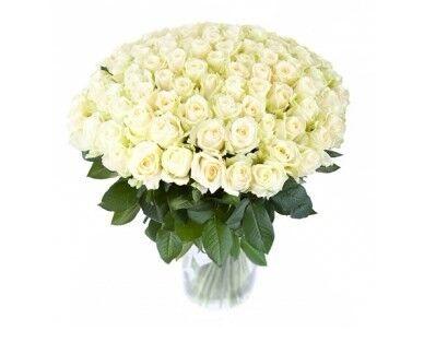 Магазин цветов Cvetok.by Букет из 101 белой розы - фото 1