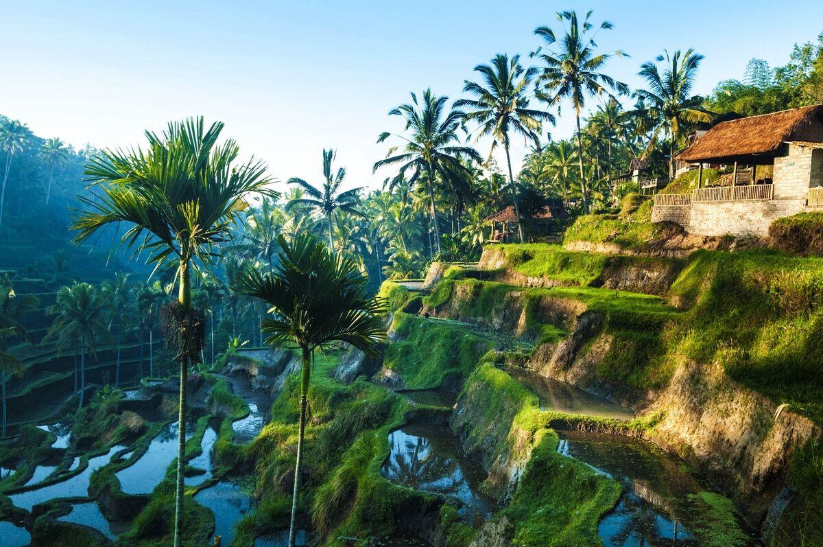 Туристическое агентство Новая Планета Пляжный авиатур в Индонезию, Бали, Sense Sunset Seminyak Hotel 3* - фото 2