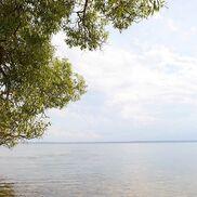 Нарочанский национальный парк - фото 1