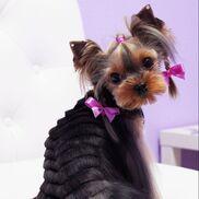 Princess (Принцесс) - фото 1