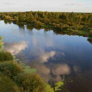 Река Березина - фото 1