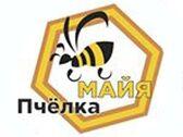 Пчёлка Майя - фото