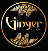 Ginger - фото
