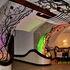 Туристическое агентство Виаполь Экскурсия Мир-Несвиж, 2 дня - фото 5