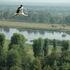 Организация экскурсии Виаполь Экскурсия «Белая Русь: Бобруйск 2 дня» - фото 2