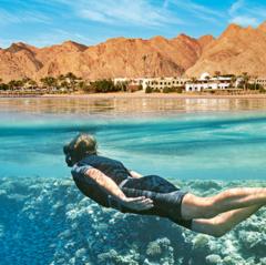 Горящий тур Голд Фокс Трэвел Пляжный авиатур в Египет, Шарм-Эль-Шейх, Parrotel Aqua Park Resort 4*