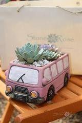 Магазин цветов Stone Rose Розовый автобус