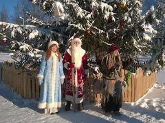 Туристическое агентство Виаполь Автобусный экскурсионный тур в Березинский заповедник