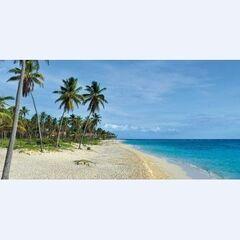 Туристическое агентство EcoTravel Пляжный авиатур в Доминикану, Grand Bahia Principe Bavaro 5